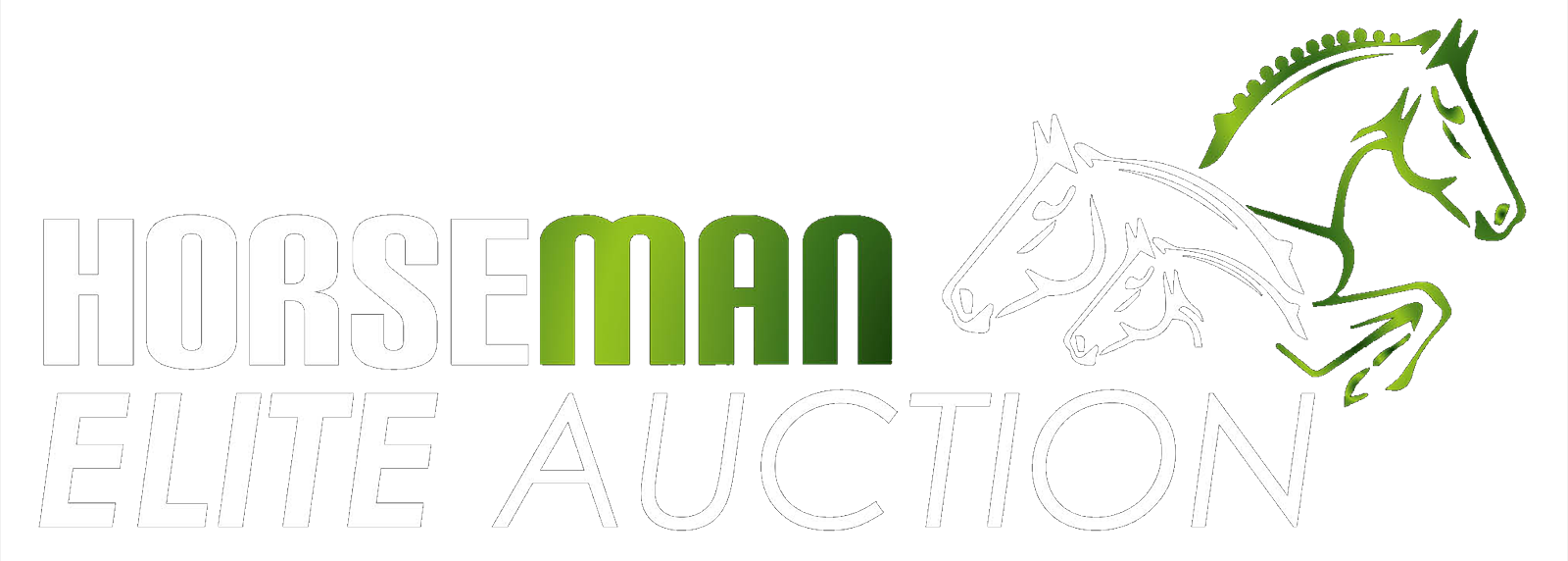 HORSEMAN ELITE AUCTION